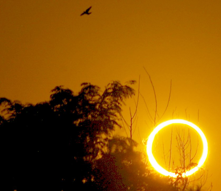 See the 'Ring of Fire' Solar Eclipse in Slooh Webcast Sunday!