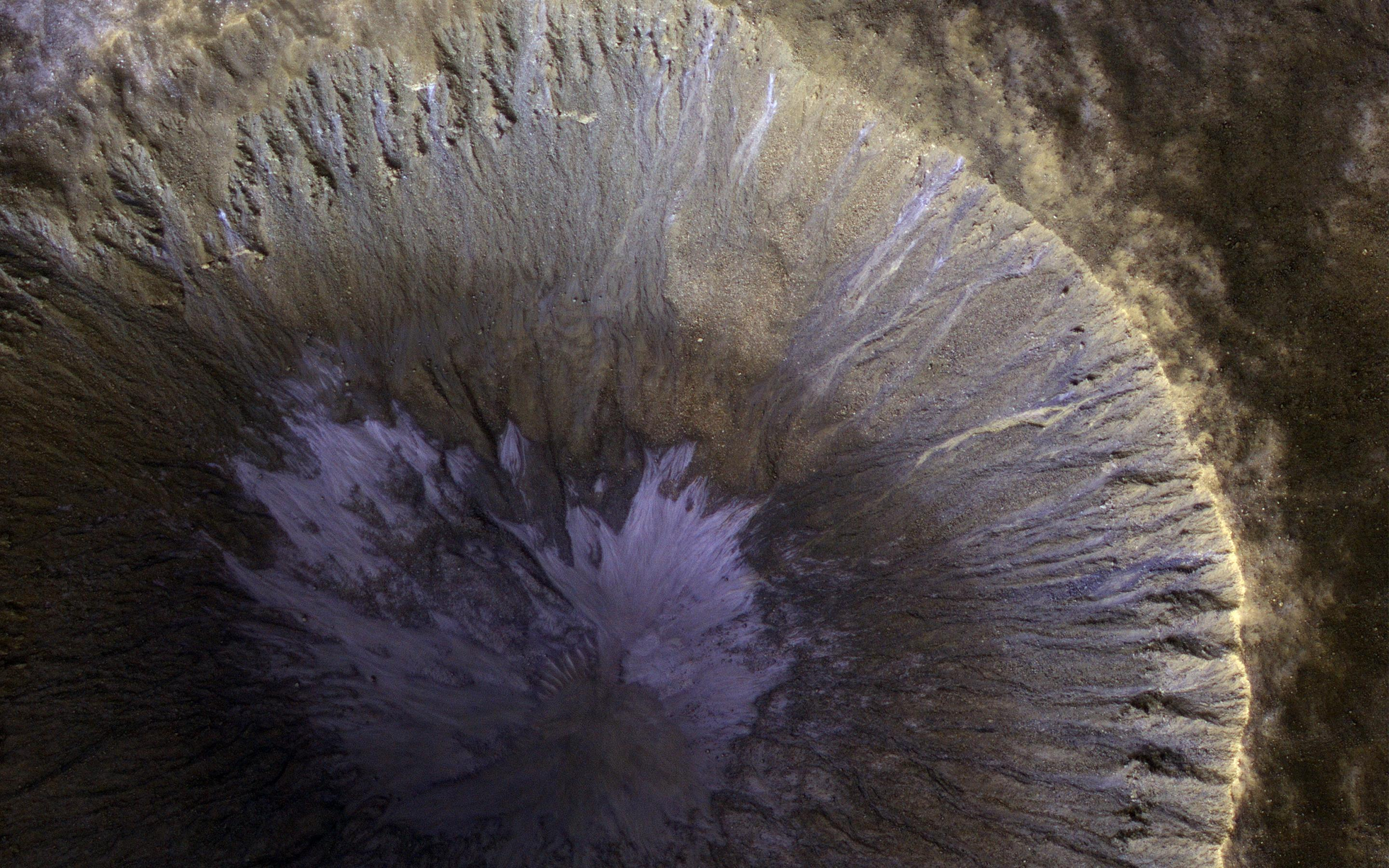 Gorgeous gullies in a Martian crater
